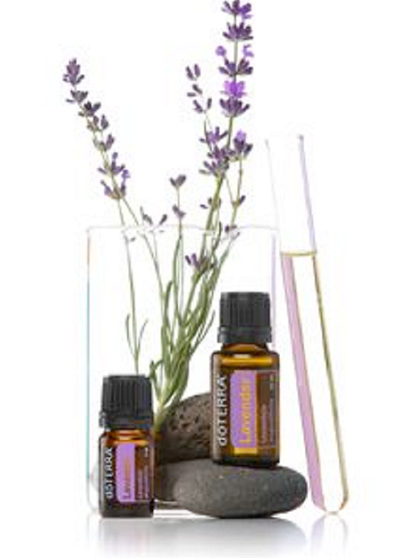 A photo of fresh lavender in a glass, next to doTERRA lavender essential oilsCore Kneads logo favicon- Core Kneads Therapeutics & Wellness in Truro, NS
